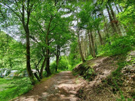 Camping te koop: Leuke overzichtelijke camping, goede omzet, veel extra's